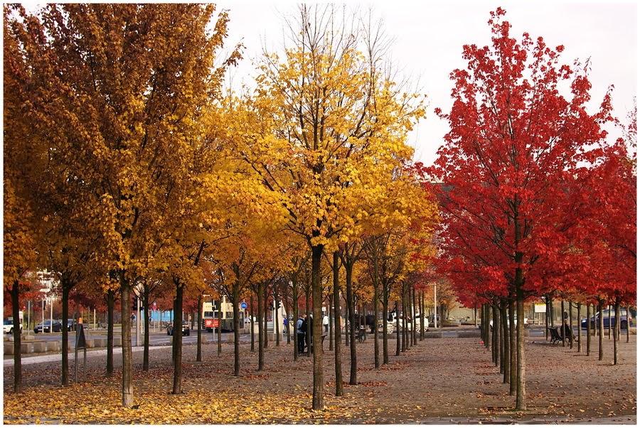 Jesień w Berlinie [2014]