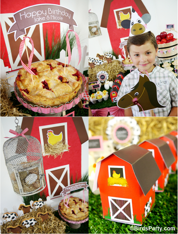 Farm and Barnyard Birthday Party Ideas and Printables - BirdsParty.com