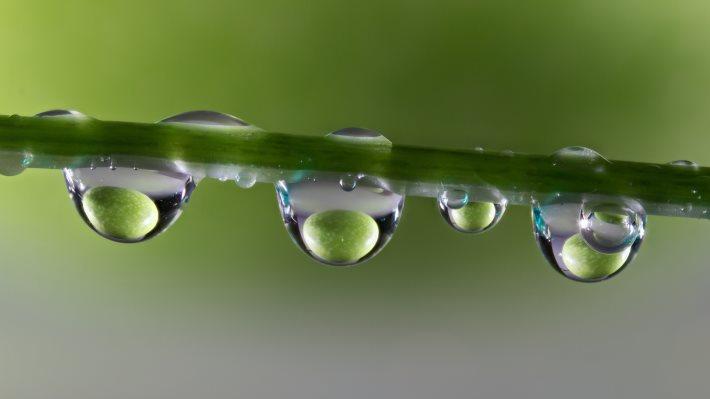Wallpaper 2: Waterdrop Refraction