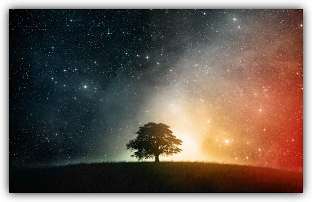 Lone Tree amid Starry Night