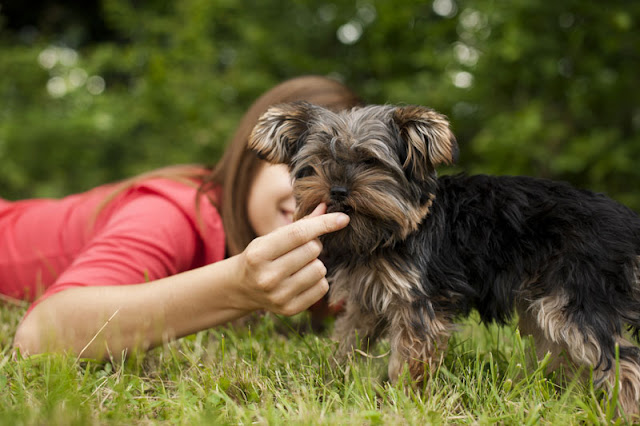 A woman gives a treat to her dog