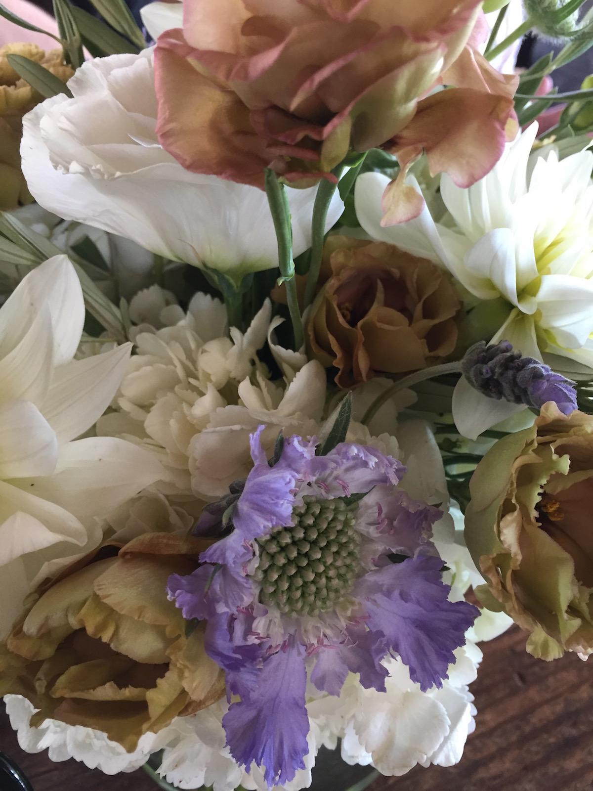 Flowers santa monica