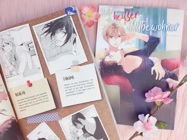 Einzelband Kaze Manga Mein heißer Mitbewohner