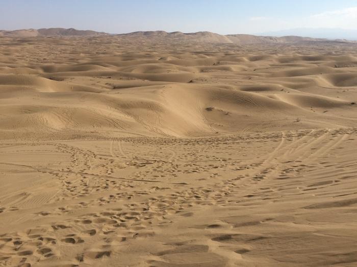سعر الرمل