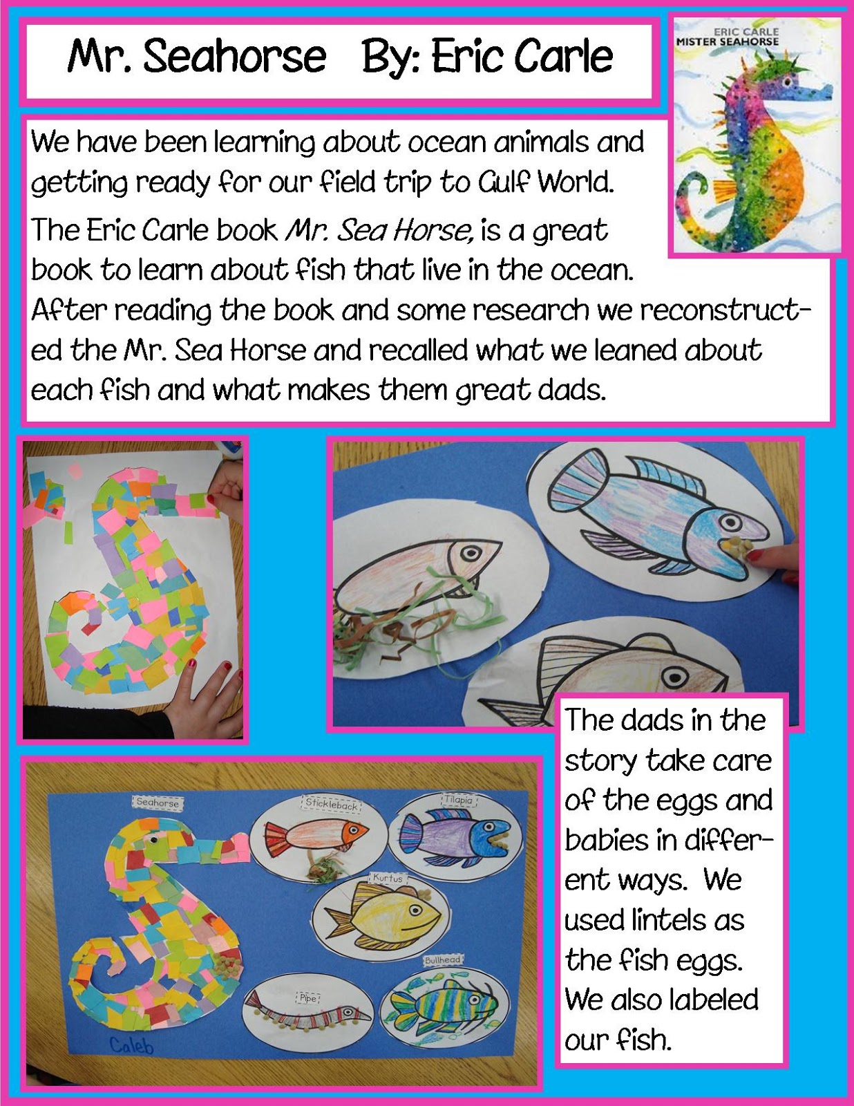 Golden Gang Kindergarten Mr Seahorse