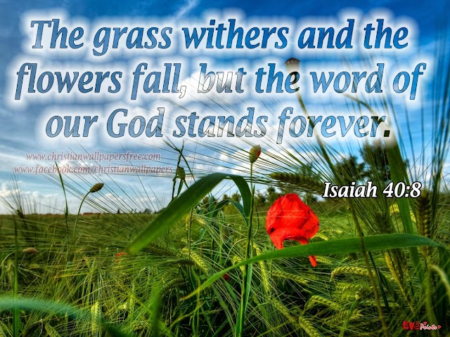The grass withers and the flowers fall, but the word of god stands forever