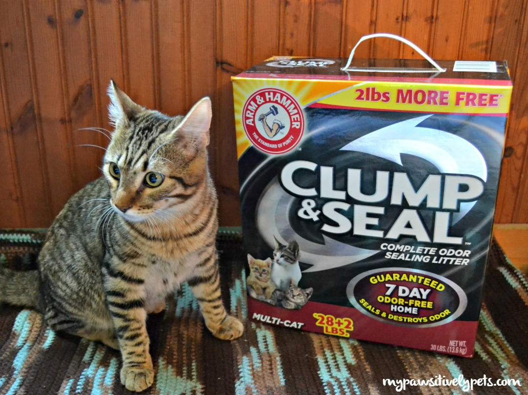 Clump And Seal Cat Litter Sizes