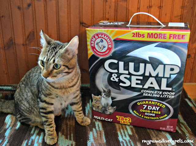 Roadside loves his ARM & HAMMER CLUMP & SEAL too. He makes frequent visits to his litter box daily, so I'm glad I have a cat litter that can help combat the smell of his bathroom habits.