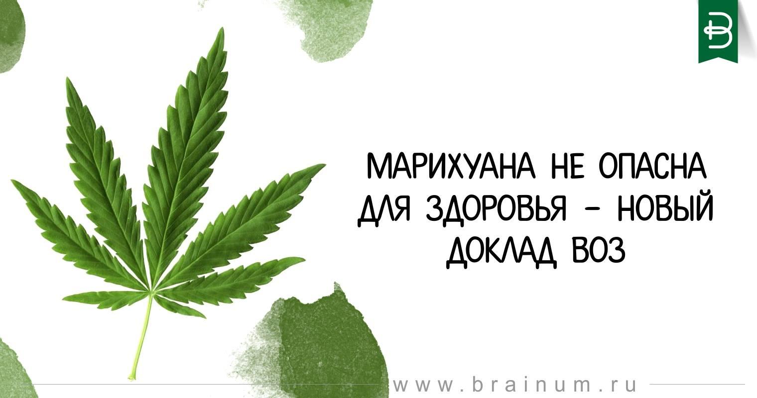 Марихуана доклад продам коноплю в украине