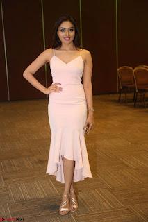 Aishwarya Devan in lovely Light Pink Sleeveless Gown 068.JPG