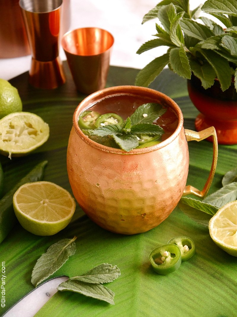 Mexican Mule Cocktail Recipe - a delicious twist on the classic Moscow Mule to spice things up for a Cinco de Mayo party or Mexican fiesta! by BirdsParty.com @birdsparty #cocktail #mexican #cincodemayo #mexicanmule #moscowmule #recipe