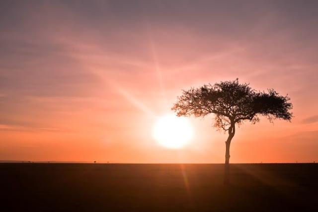 نصائح مفيدة لإلتقاط أروع الصور للشمس