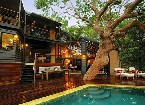 สร้างบ้านครอบต้นไม้