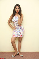 Nishi Ganda stunning cute in Flower Print short dress at Tick Tack Movie Press Meet March 2017 048.JPG
