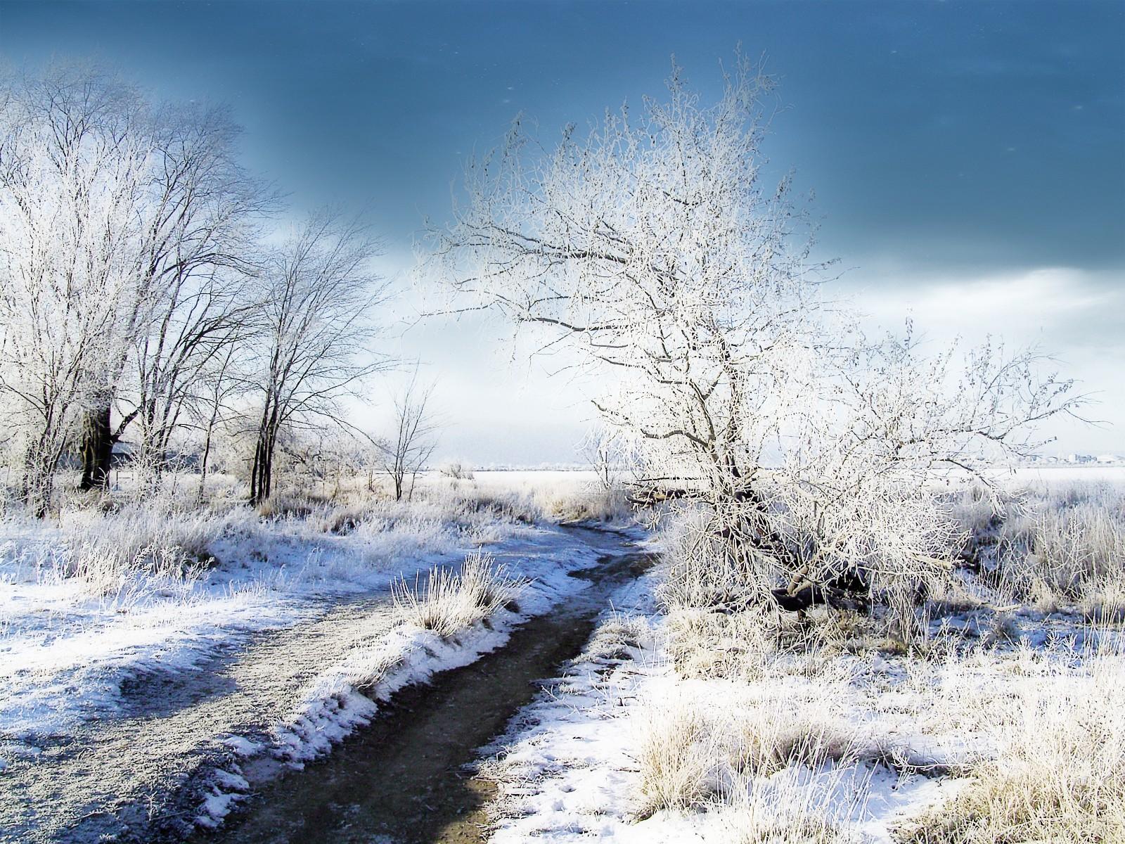 Winter desktop backgrounds free wallpapers for pc - Winter desktop ...