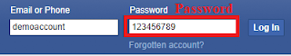 show hidden password chrome