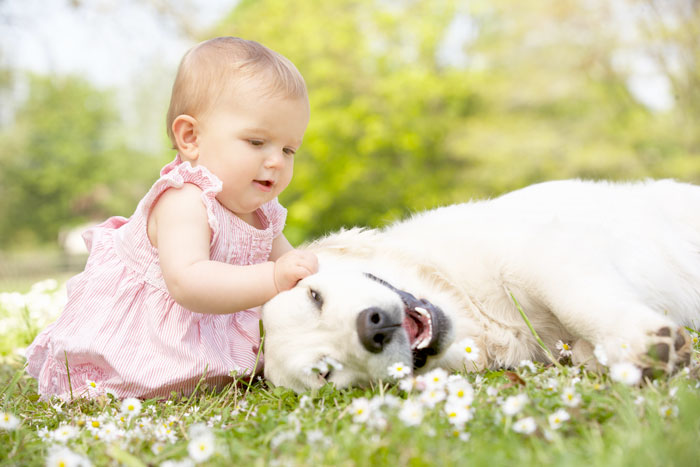 Top Reasons Children Should Grow Up With Pets