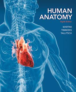 Human Anatomy - 8th Edition - Martini, Timmons, Tallitsch
