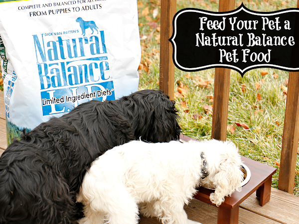 Feed Your Pet a Natural Balance Pet Food -  #NaturalBalance
