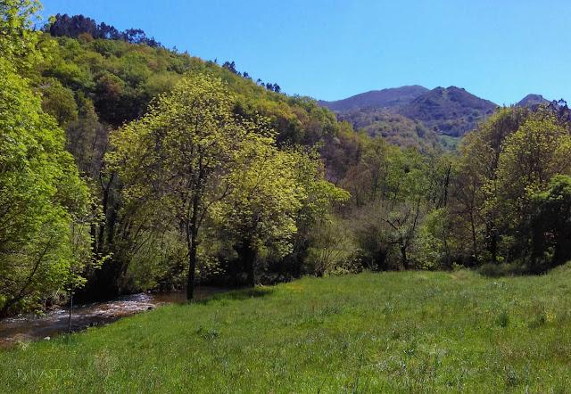 Senda Fluvial Río de La Marea - Asturias