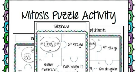 Math in Demand: Mitosis Puzzle Activity