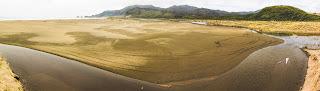 Foto Panoramica Playa de Chepu - Isla de Chiloé