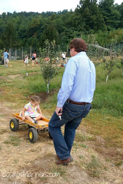 Apple of My Eye: Tips for Visiting Sky Top Orchard, Flat Rock, North Carolina   CosmosMariners.com