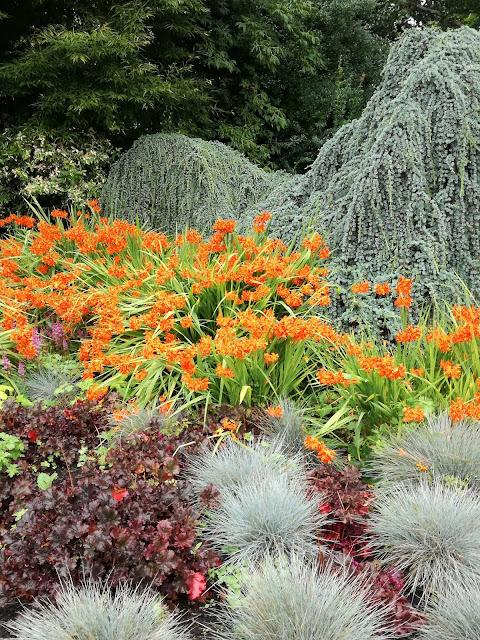 English gardens ogród angielski