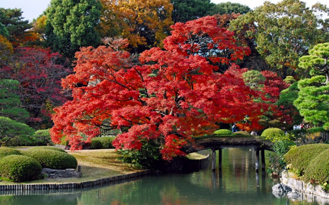 Taman Rikugien, Tokyo, Jepang