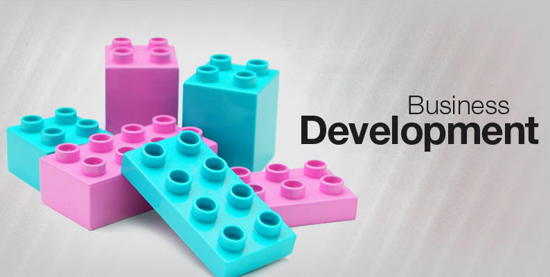 Why Is It Essential To Hire Business Developer? | Vyas Infotech