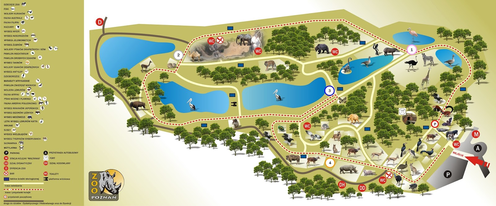 Fani Zoo Miesiecznik Milosnikow Zoo Mapy Zoo