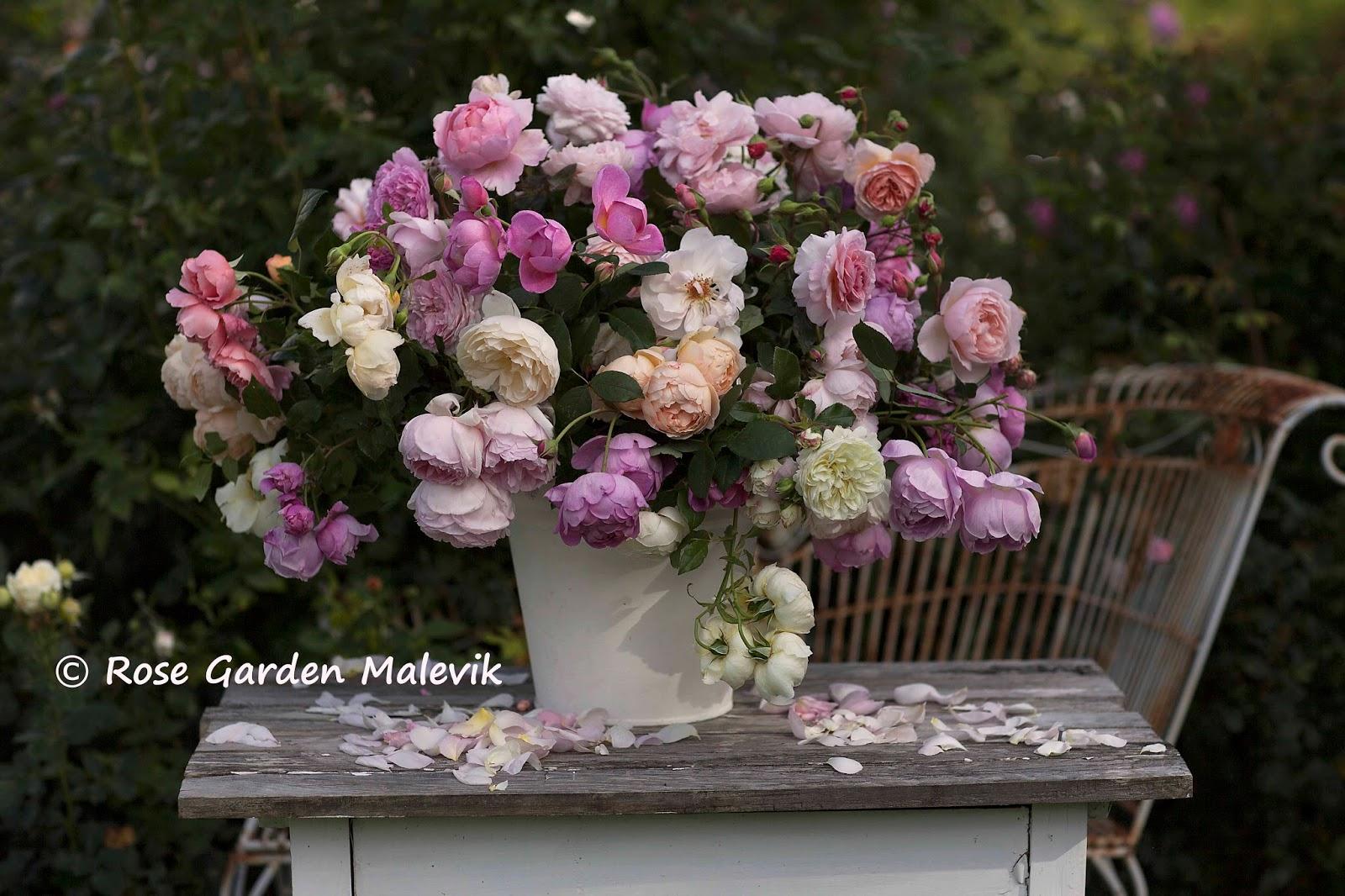 """ROSE GARDEN Malevik: en lite VILD bukett ~ a """"wild"""" bouquet"""