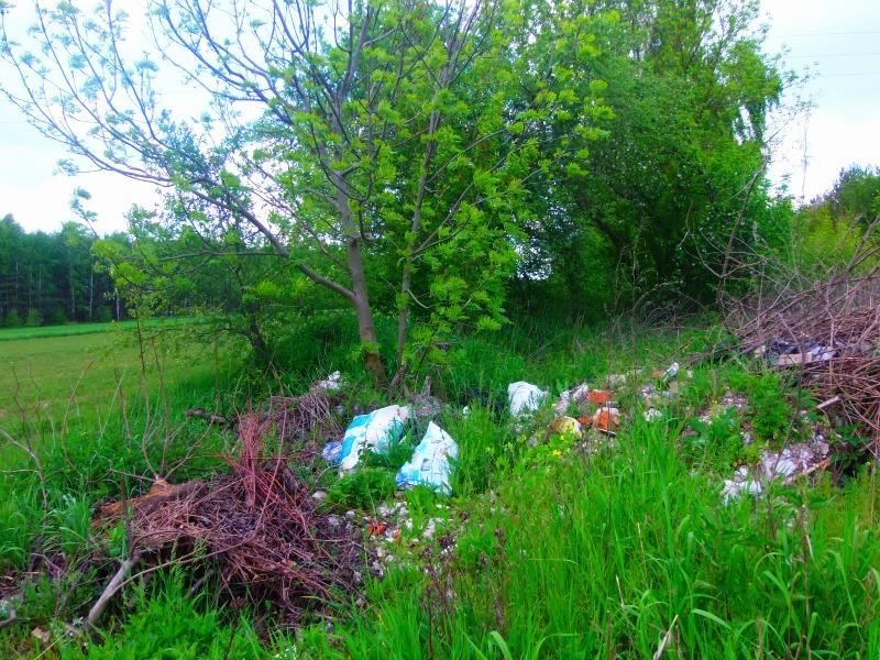 zaśmiecanie środowiska