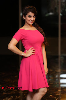 Actress Anchor Manjusha Latest Pictures in Pink Short Dress  0042.JPG