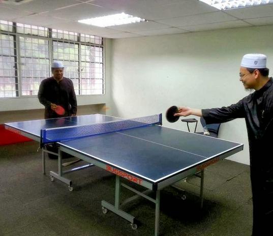 high quality meja pingpong bugsport