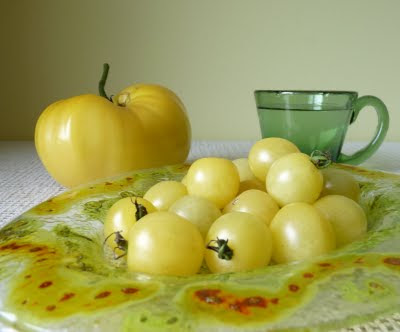 Snow White Cherry Tomatoes and Great White Tomato
