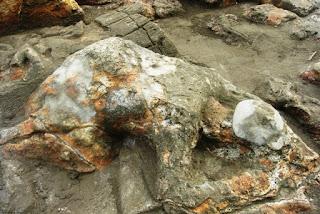 Keunikan Batu Malin Kundang di Pantai Air Manis Padang