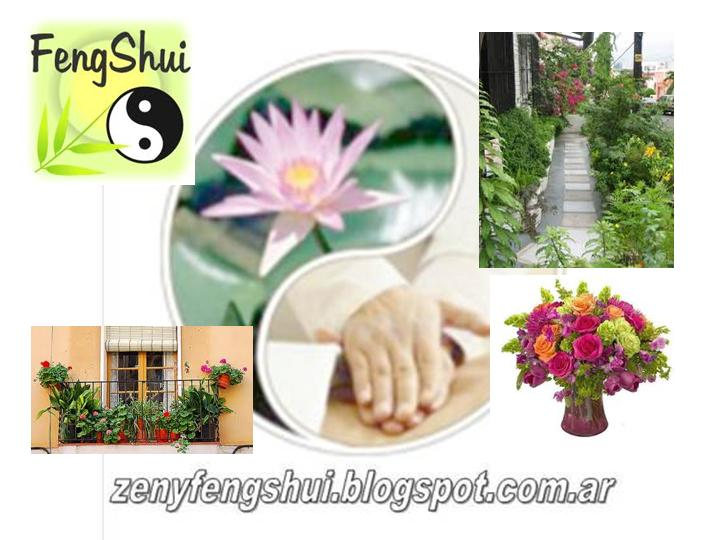 Zen y feng shui tao feng shui plantas for Planta del dinero feng shui
