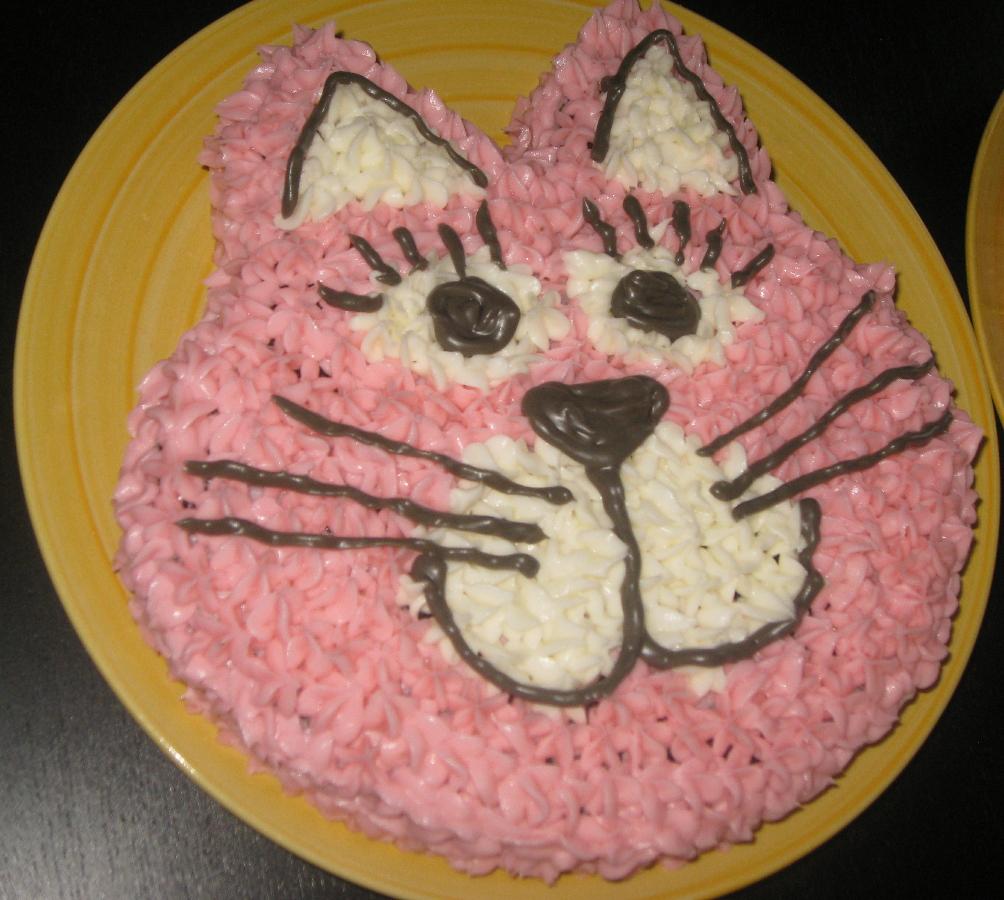 Easy Kitty Cat Cake