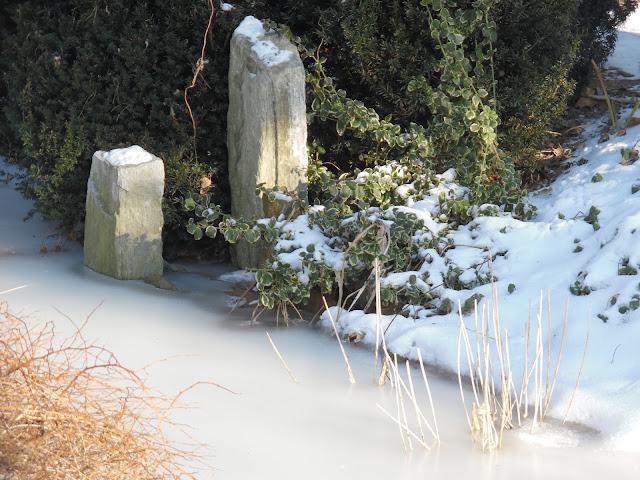 strumień zimą