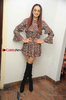 Kannada Actress Ragini Dwivedi Stills in Floral Short Dress at Ranachandi Movie Press Meet  0012.jpg