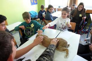 """Το Γυμνάσιο Κορινού πραγματοποίησε την """"Θεματική Εβδομάδα"""" του Υπουργείου Παιδείας."""