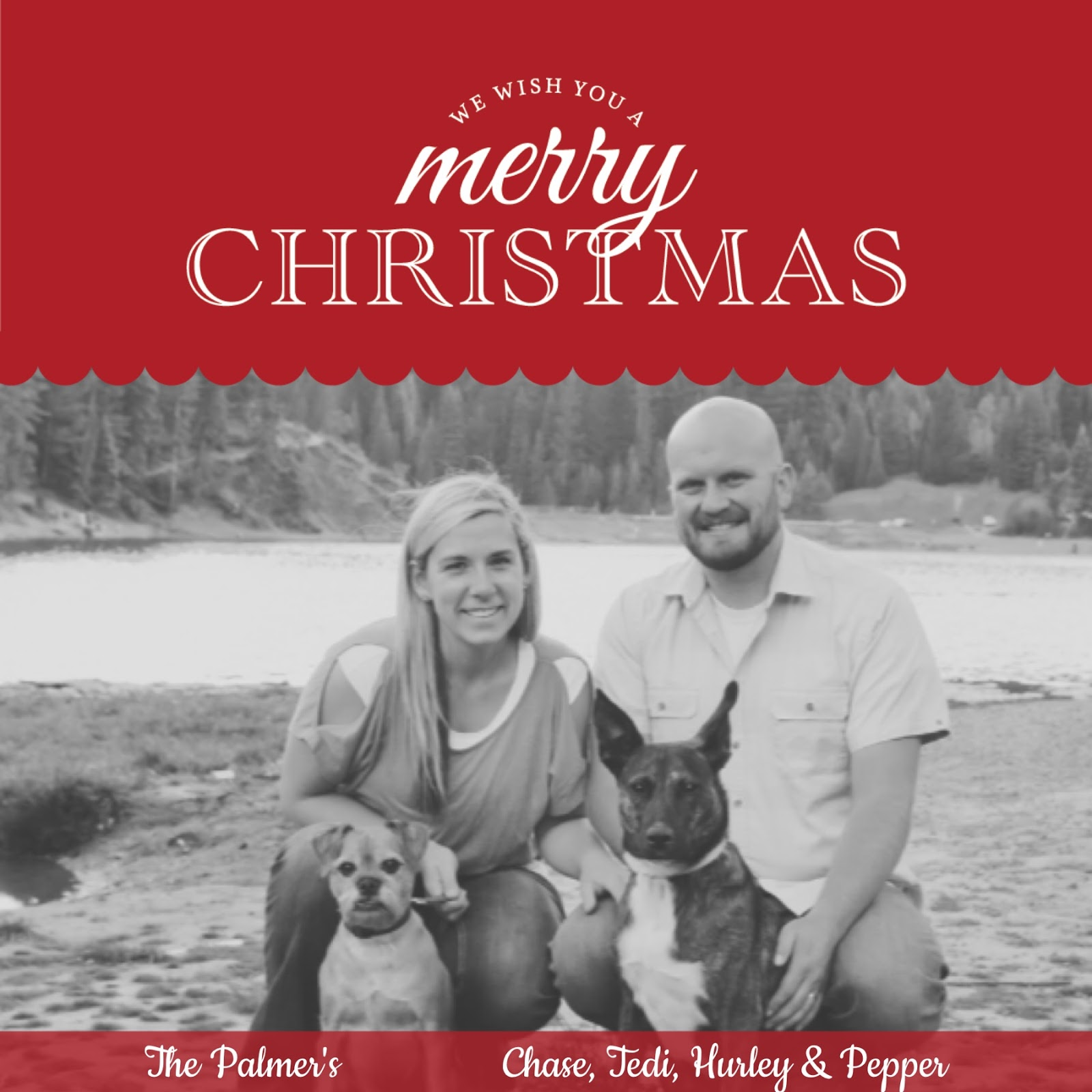 Merry Christmas from the Palmers