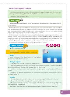6. Sınıf Fen Bilimleri Ders Kitabı Cevapları Sevgi Yayınları Sayfa 49