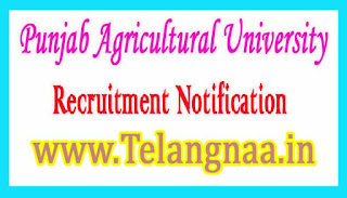 Punjab Agricultural University PAU Recruitment Notification 2017