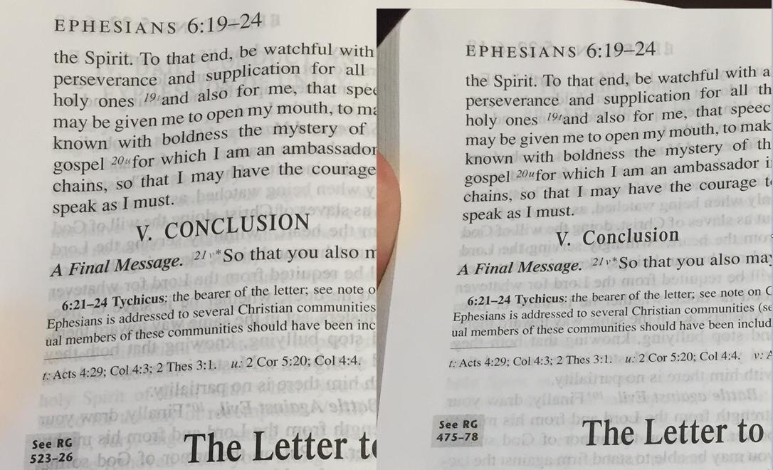 Choosing a Catholic Study Bible | Douglas Beaumont