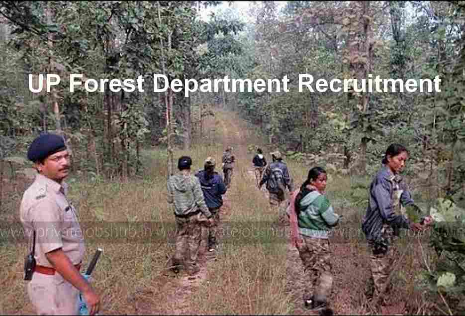 UP Forest Department Recruitment 2017–2018   1553 Forest Guard