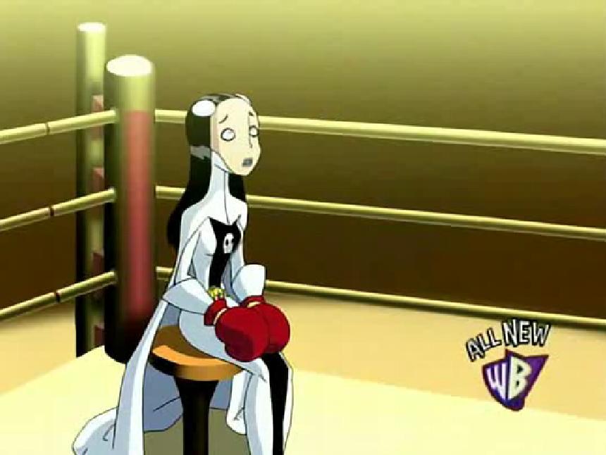 Cartoon Girls Boxing Database: Legion of Superheroes ...