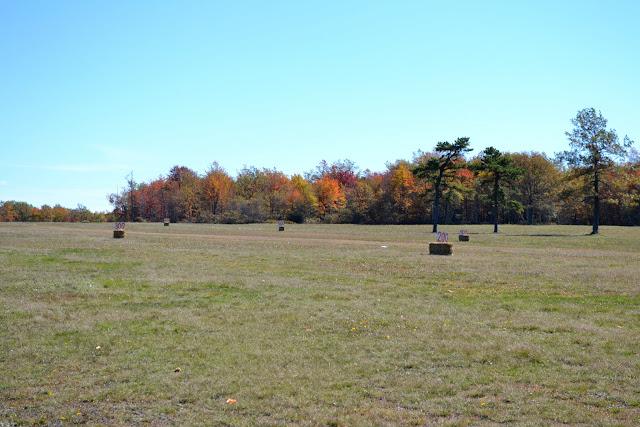 Чемпионат по метанию тыкв, Лонг Понд, Пенсильвания (Pumpkin Sling Festival, Long Pond PA)