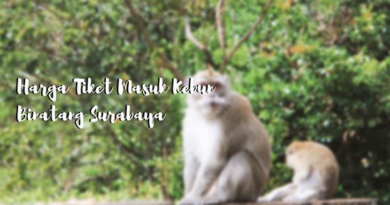 Harga Tiket Masuk Kebun Binatang Surabaya A Blog By Mutia Nurul Rahmah